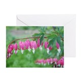 Lyre Plant Greeting Card - flower gift