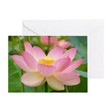 Lotus Blossum Greeting Card flower gift