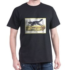 Audubon Gray Wolf Animal (Front) T-Shirt