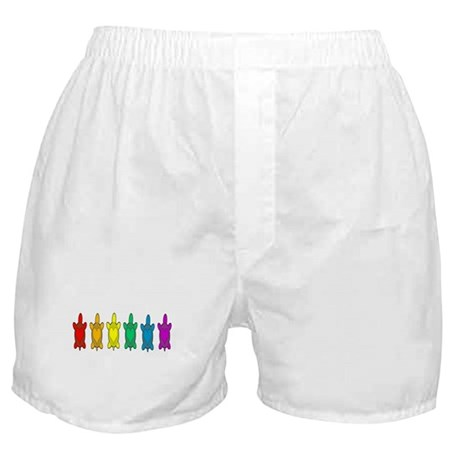Rainbow Sea Turtles Boxer Shorts
