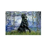 Lilies / Flat Coated Retrieve Rectangle Magnet