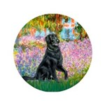 Flat Coated Retriever 2 3.5