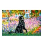 Flat Coated Retriever 2 Postcards (Package of 8)