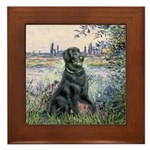 Flat Coated Retriever 2 Framed Tile