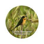 Little Bee-eater 3.5
