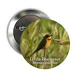 Little Bee-eater 2.25