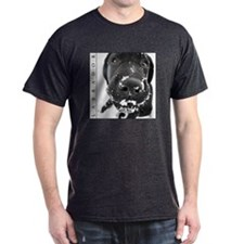 Black Lab Sleek Black T-Shirt, Cute NEW Item!!