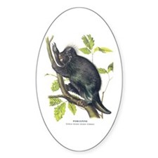 Audubon Porcupine Animal Oval Decal