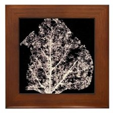 Leaf Lace In Space - Framed Tile