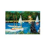Sailboats / Flat Coated Retri Rectangle Magnet