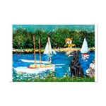 Sailboats / Flat Coated Retri Mini Poster Print