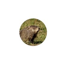 Groundhog Mini Button (10 pack)