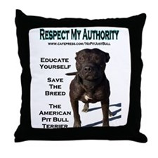 """Respect"" Throw Pillow"
