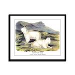 Audubon Mountain Goat Animal Framed Panel Print