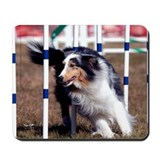 Blue Merle Sheltie Mousepad