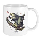 Audubon Opossum Possum Small Mugs