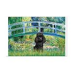 Bridge / Poodle (Black) Mini Poster Print