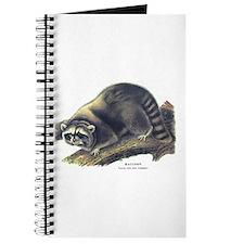 Audubon Raccoon Coon Journal