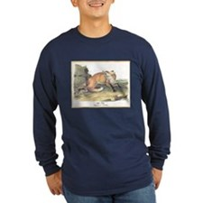 Audubon Red Fox Animal (Front) T