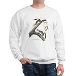 Audubon Red Squirrel (Front) Sweatshirt