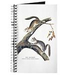 Audubon Red Squirrel Journal