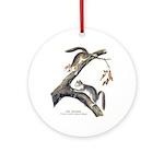 Audubon Red Squirrel Ornament (Round)