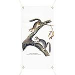 Audubon Red Squirrel Banner