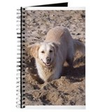 Golden Retriever Digging Journal