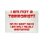 I am NOT a terrorist! Rectangle Magnet (100 pack)