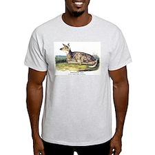 Audubon White-Tailed Deer (Front) T-Shirt