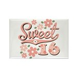 Pretty Pink Sweet 16 Rectangle Magnet (10 pack)