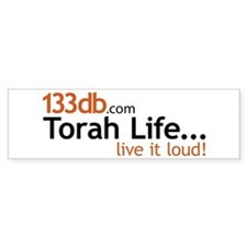 *Special price...133db Bumper Bumper Sticker