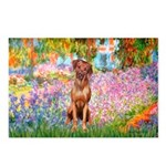 Garden / R Ridgeback Postcards (Package of 8)