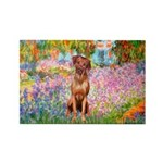Garden / R Ridgeback Rectangle Magnet (10 pack)
