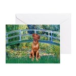 Garden / R Ridgeback Greeting Card