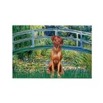 Garden / R Ridgeback Rectangle Magnet
