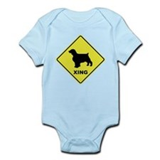 Welsh Springer Crossing Onesie