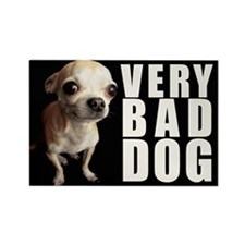 Funny Pooch Rectangle Magnet