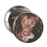 TASTY Chocolate Lab dog gift Button