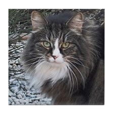 Norwegian Forest Cat Tile