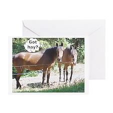 Horse humor got hay?  Greeting Cards (Pk of 10