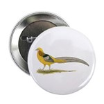 "Yellow Golden Pheasant 2.25"" Button (10 pack)"