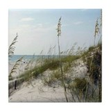 Tile Coaster with Cape San Blas image
