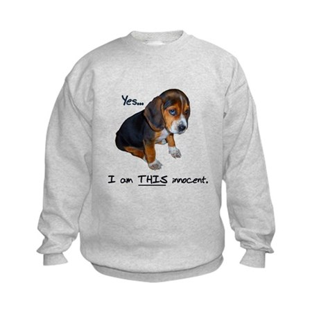 Innocent Puppy Kids Sweatshirt