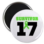 Lymphoma Survivor 17Year Magnet