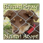 Adopt A Dog! Tile Coaster