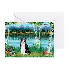 Birches / (B&W) Cat Greeting Card
