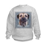 Border Terrier Head Study Sweatshirt