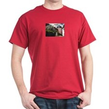 Uppsala Castle T-Shirt