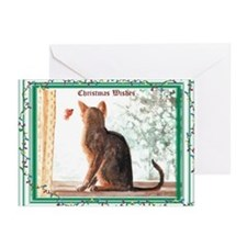 Abyssinian Christmas Wishes Cards (Pk of 10)